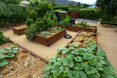 Material For Raised Garden Beds